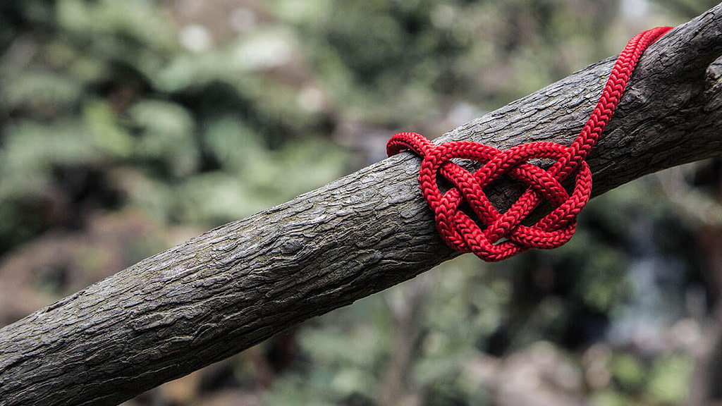 Red heart knot on a branch