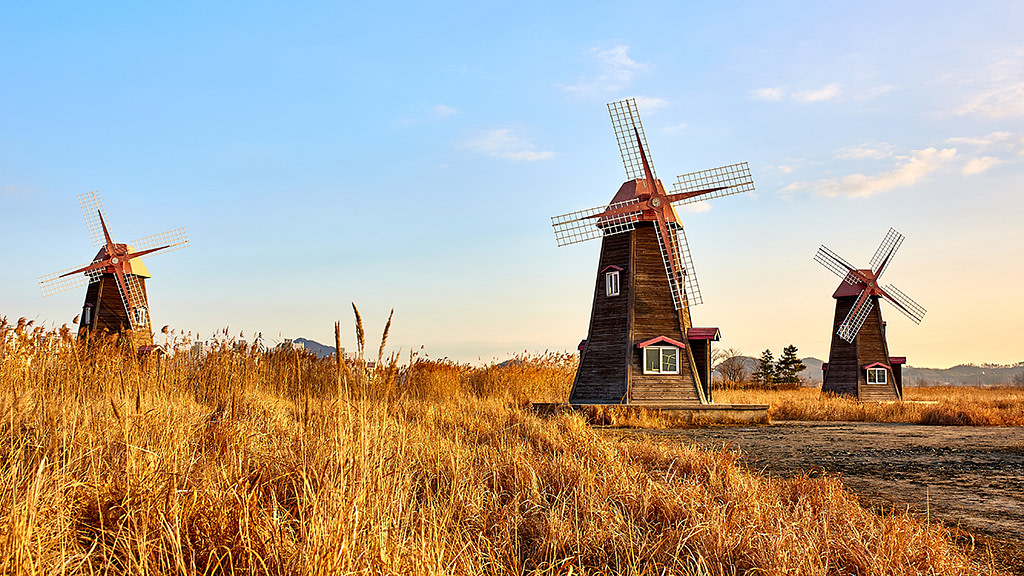 Windmills for Honor